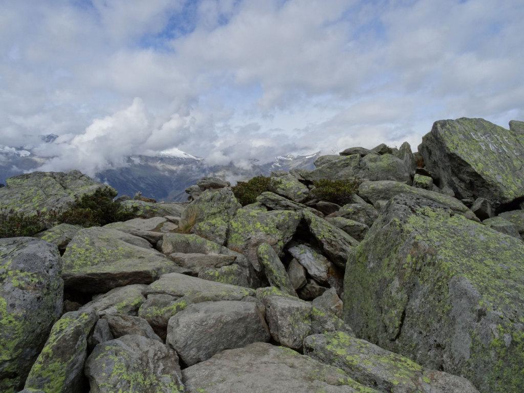 Ausblick vom Klaussee nach Norden