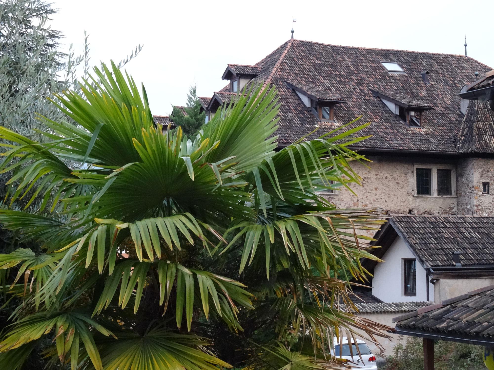 Südtirol (Ahrntal und Kaltern) - 12.-20.10.2014