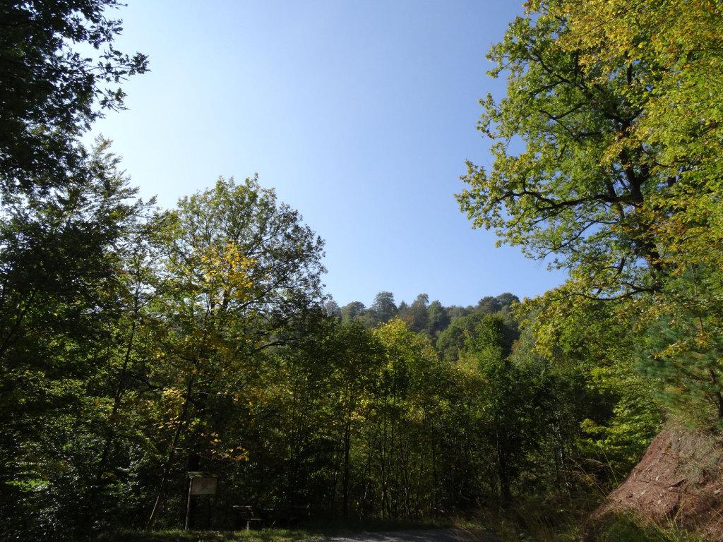 DSC09228-Wanderung-bei-Iphofen