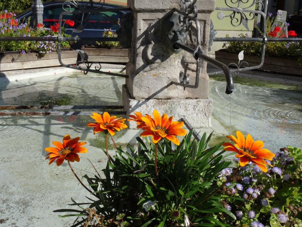 Iphofen - Marktplatz, Marienbrunnen - Die Blumen sind jedenfalls nicht eingeschüchtert
