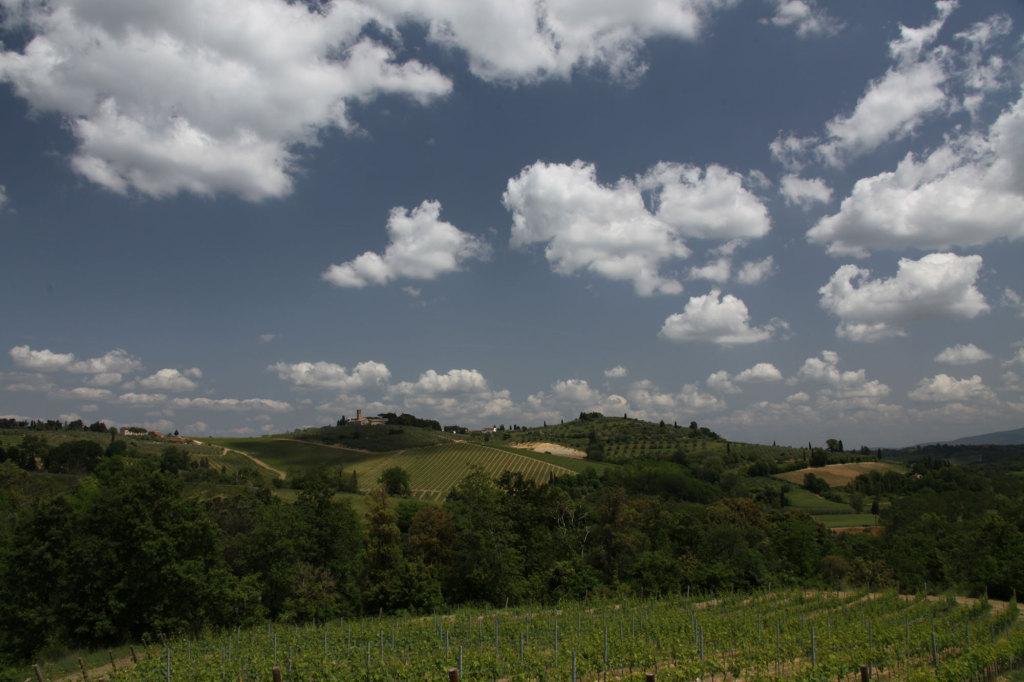 Nahe San Gimignano
