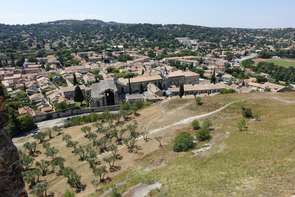 Blick vom Fort Saint André auf die Kartause