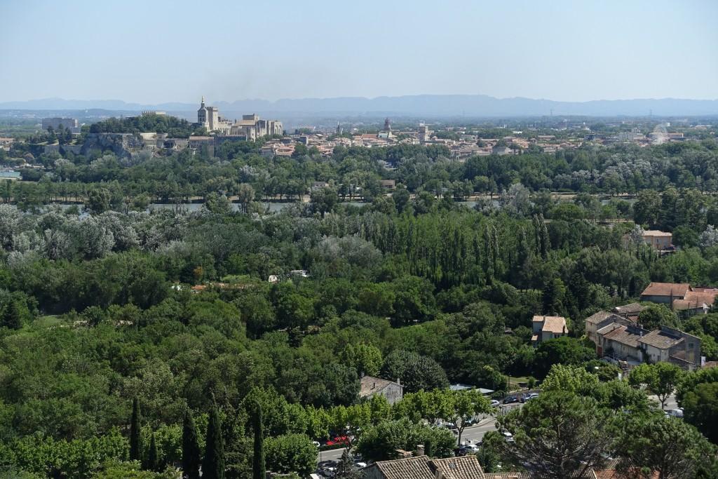 Blick vom Fort Saint André auf Avignon und die Alpilles