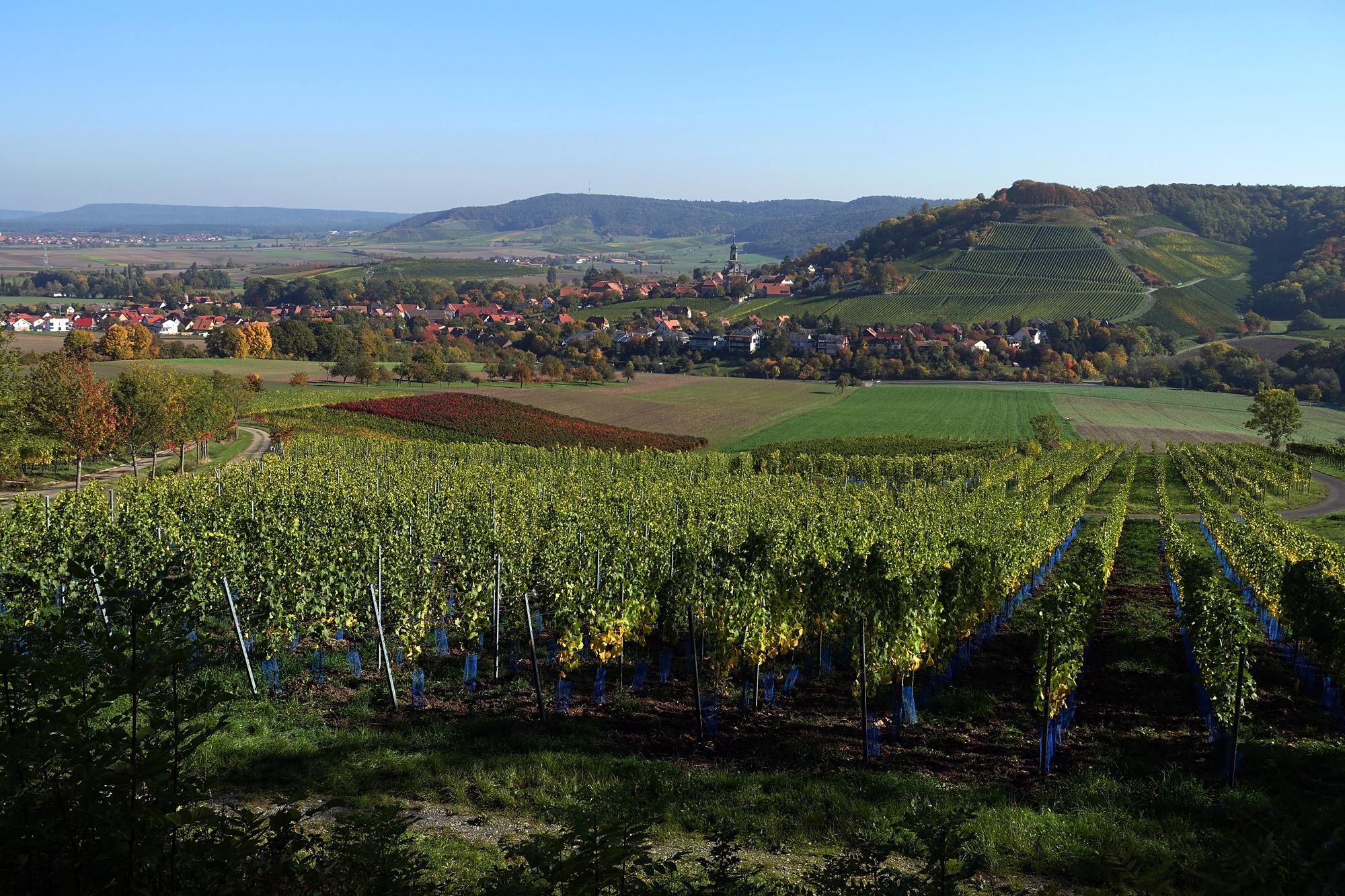 Castell im Steigerwald - 12.10.2015