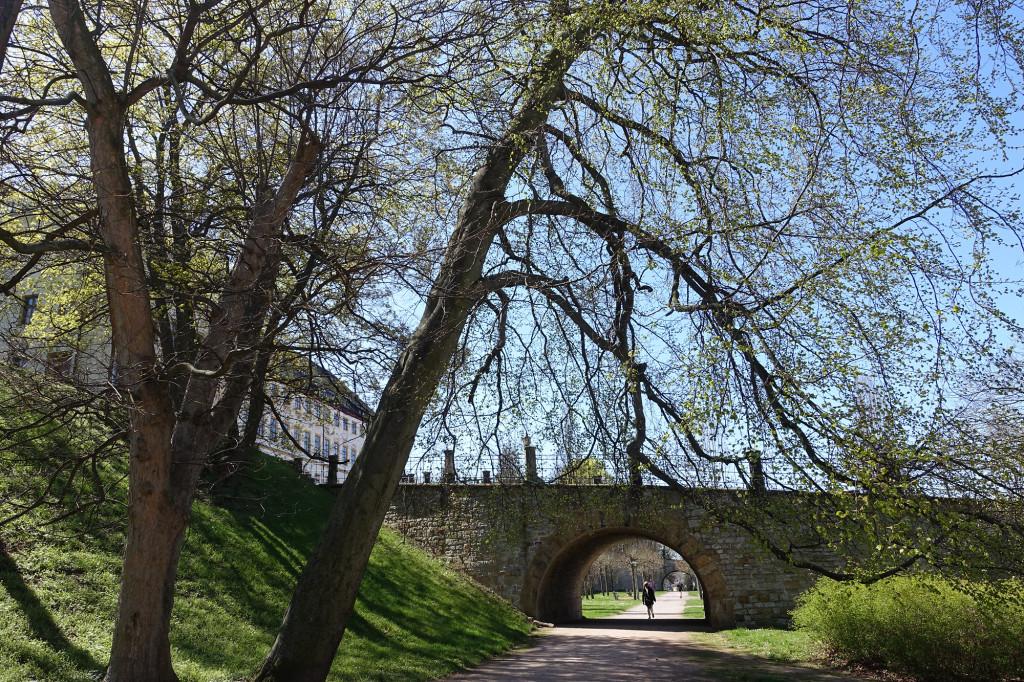 Im Park des Schlosses Friedenstein