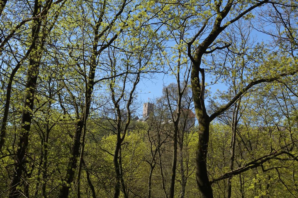 Aufstieg zur Wartburg - Ziel in Sicht