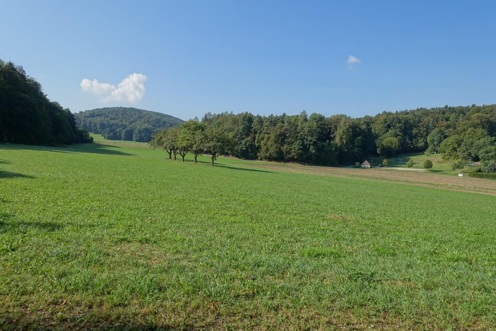 dsc09381-rundwanderung-goessweinstein