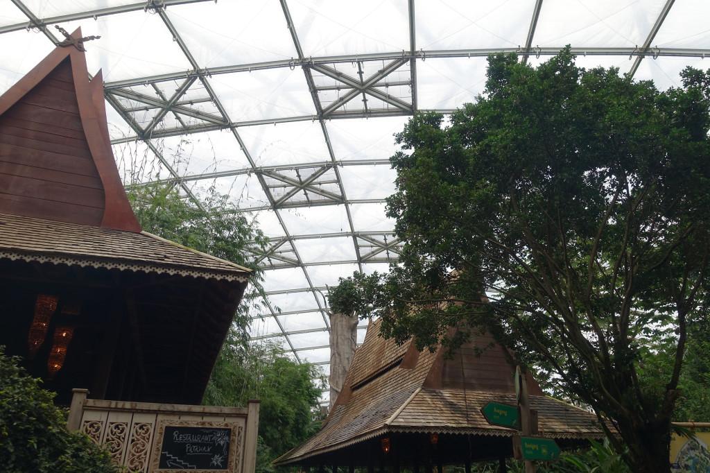 Zoo Leipzig - im Gondwanaland