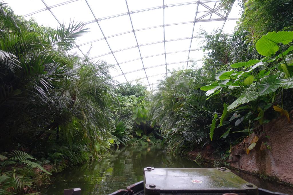 Zoo Leipzig - im Gondwanaland - Bootsfahrt durch den Dschungel