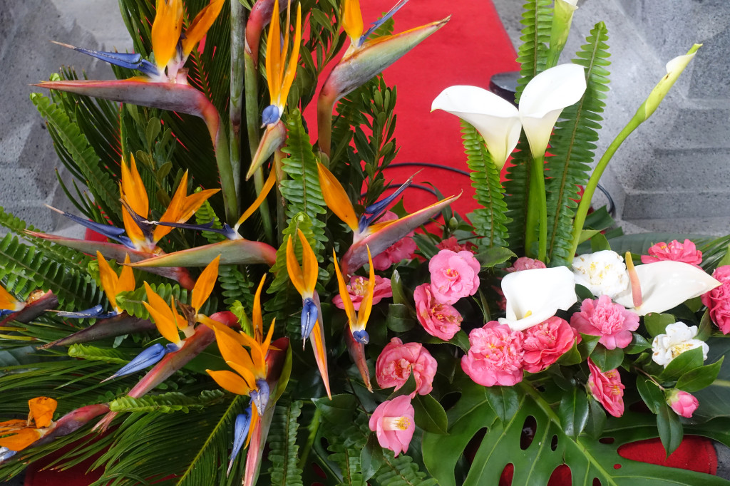 DSC05109 Azoren 2017 - Ausflug Lagoa Azul - Lagoa Verde - Sete Cidades - Kirche S. Nicolau - Blume