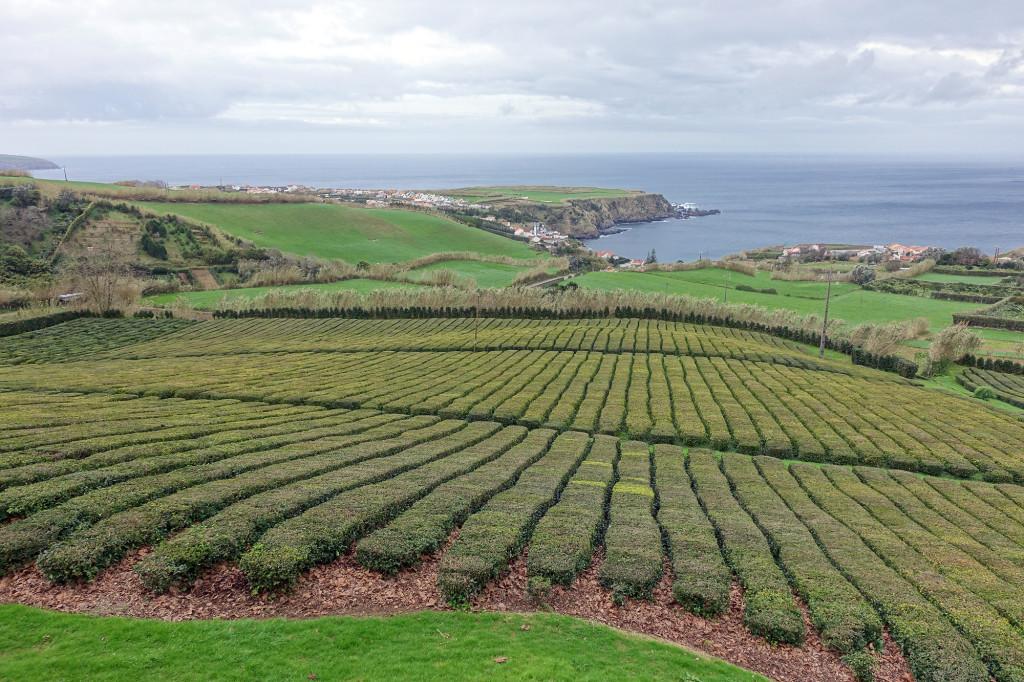 Blick von Chá Porto Formoso