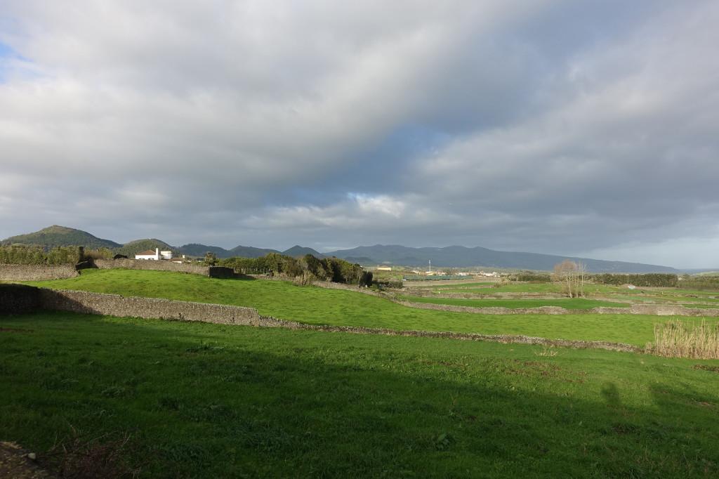 Weide in der Nähe des Ortes Rabo de Peixe