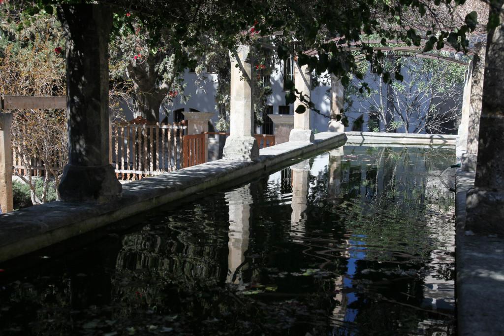 IMG_4715 Mallorca - Palma - ein Garten