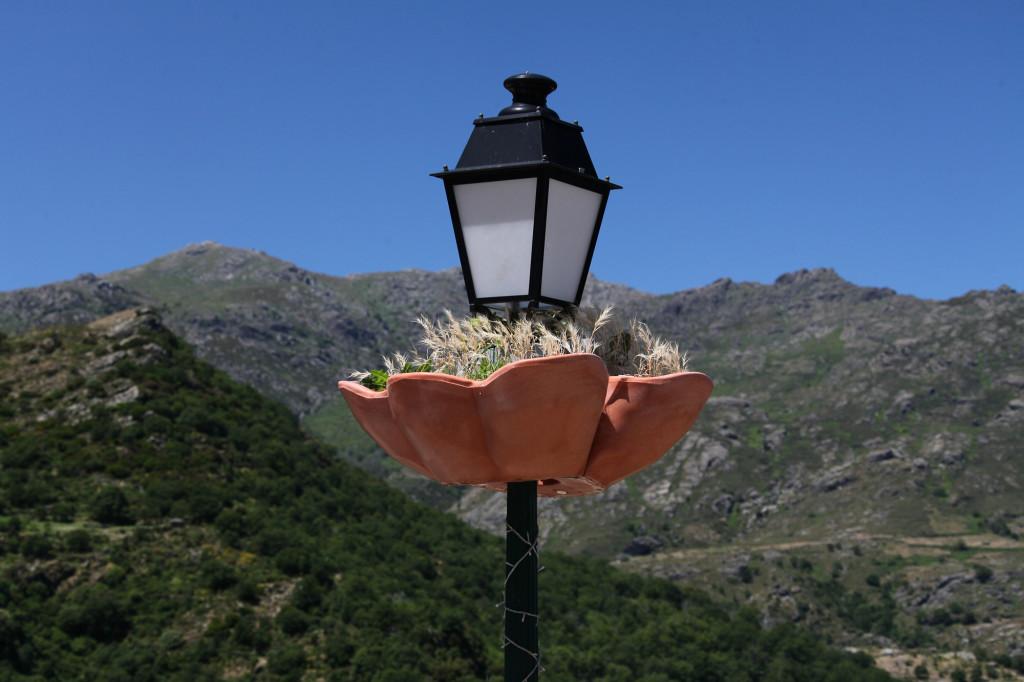 IMG_6247 Korsika 17 - Ausflug Nebbio - Pieve
