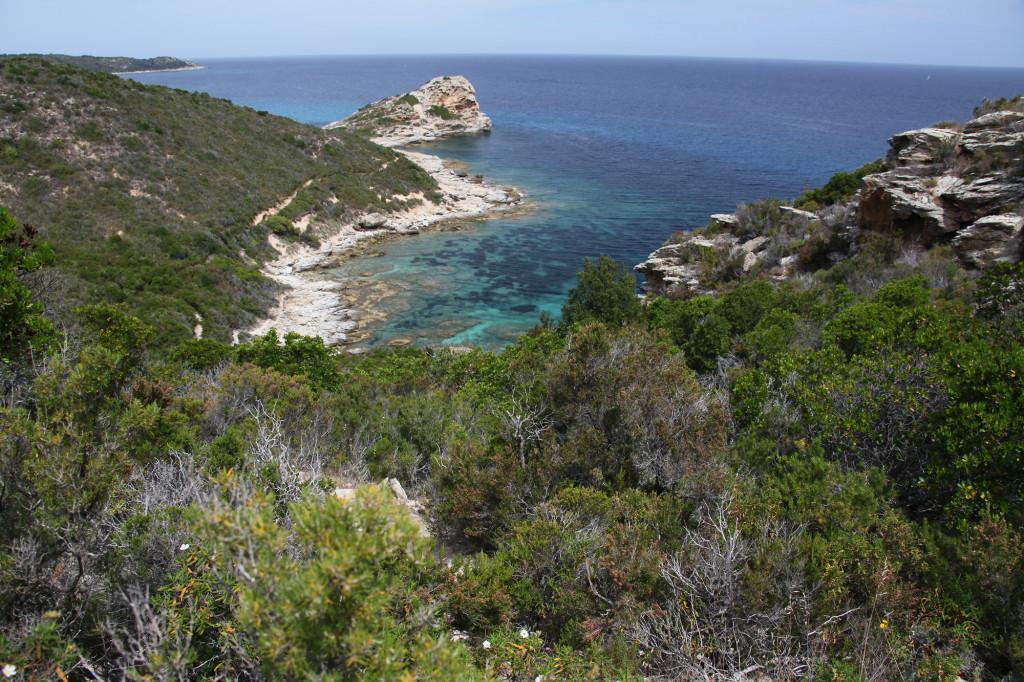 IMG_6488 Korsika 17 - Wanderung Plage de Lotu nach St. Florent