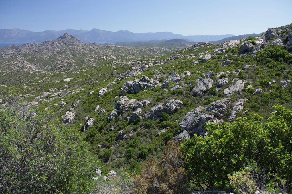 Auf dem Weg nach Calvi - Désert des Agriates