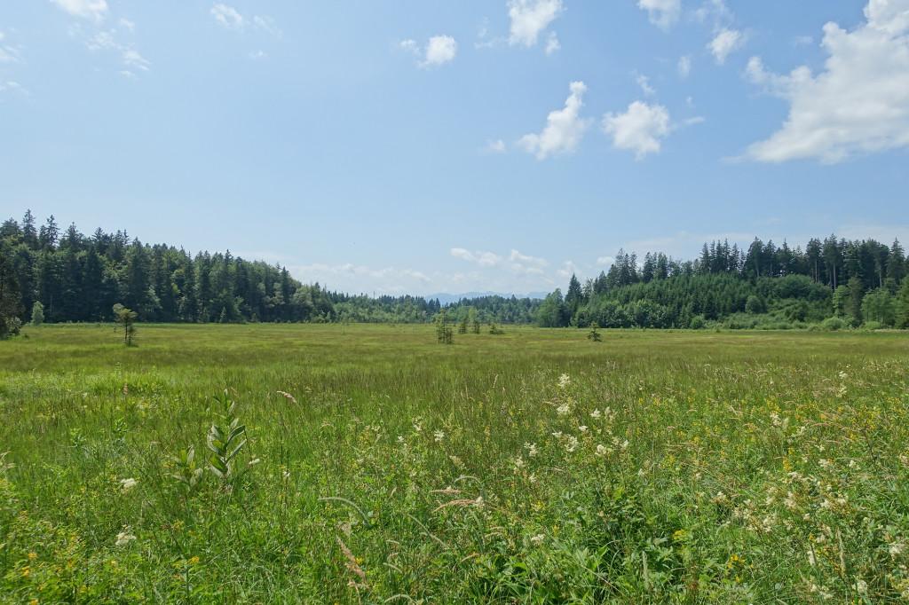 Am Kirchsee