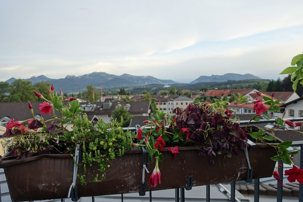 """Hotel """"Bayerischer Hof"""" - auf der Dachterrasse"""