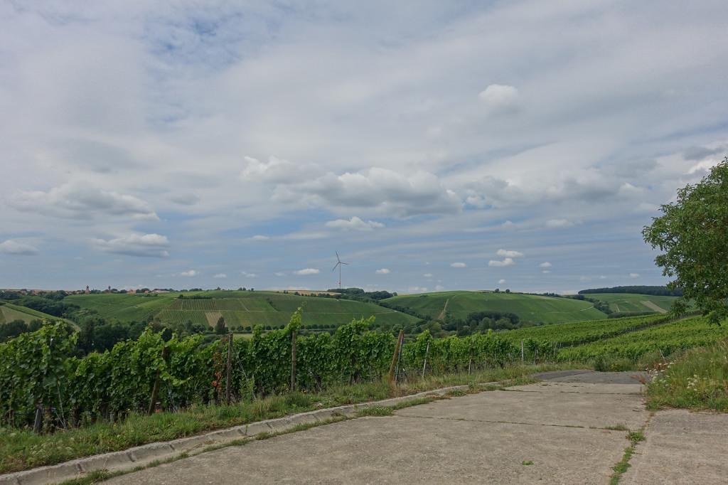 Zwischen Sommerach und Nordheim - also mich stört es schon, das Windrad in einer solch lieblichen Umgebung