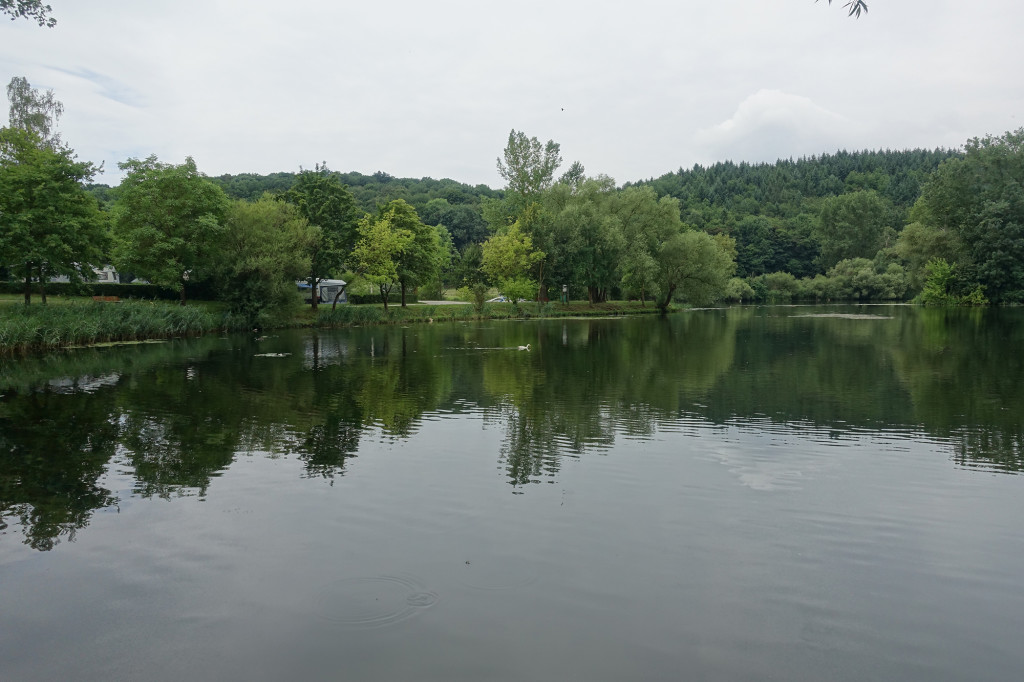 """Altwasser des Mains am Campingplatz """"Katzenkopf"""""""