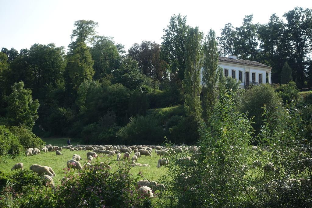 """Das """"Römische Haus"""" am Park an der Ilm"""