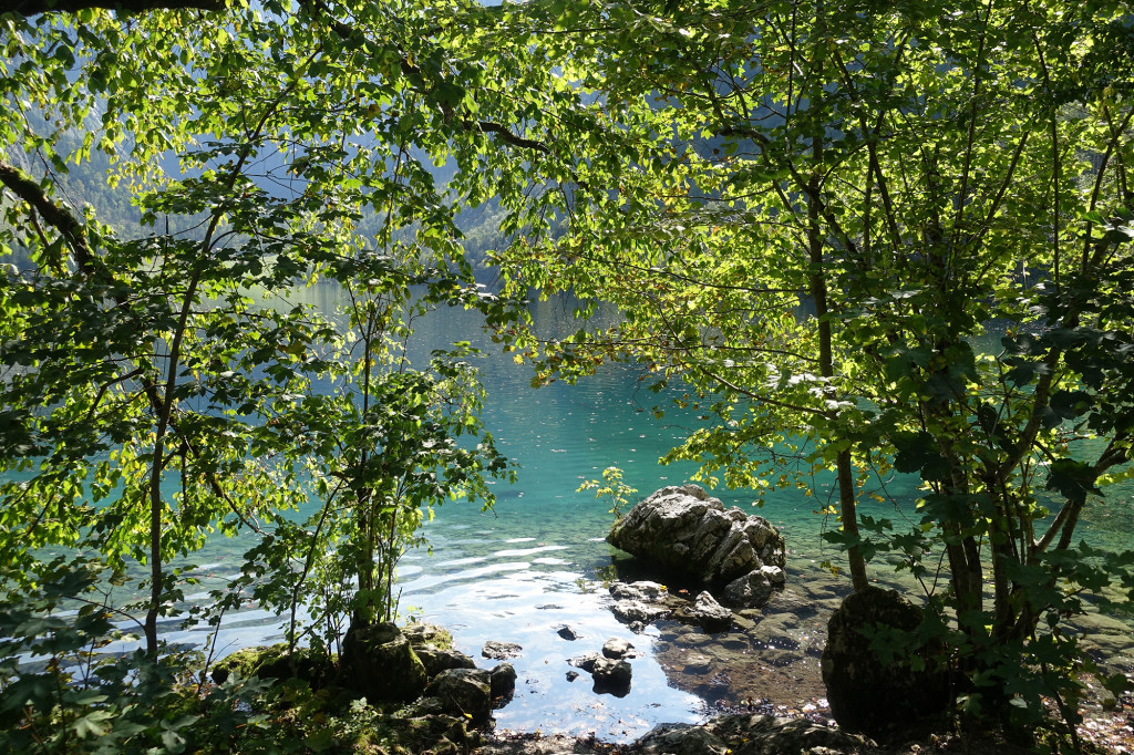 """Am """"Obersee"""""""