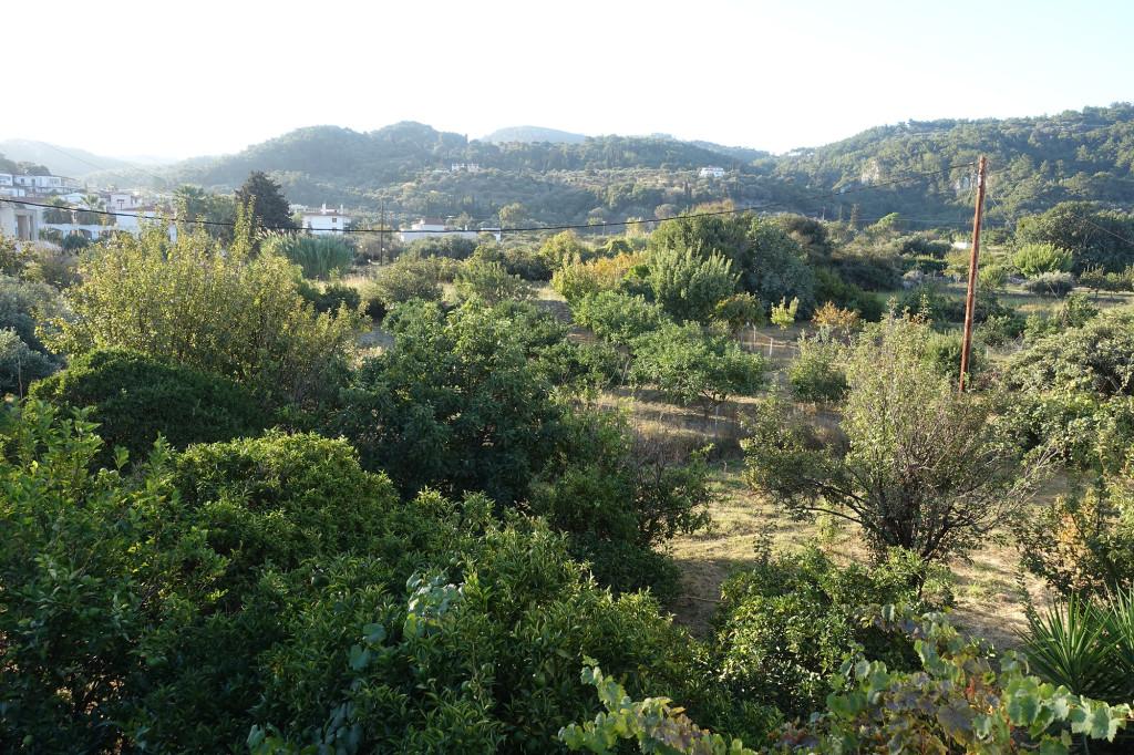 Morgendlicher Blick von unserem Balkon