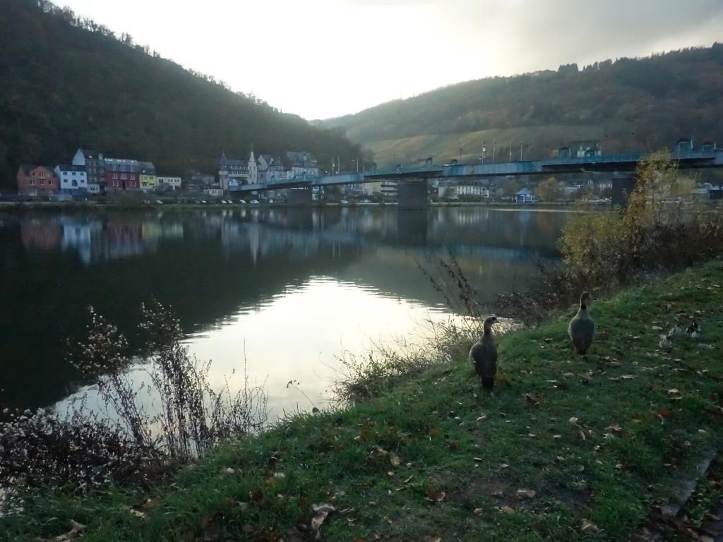 Die Brücke über die Mosel zwischen den Ortsteilen Traben und Trarbach