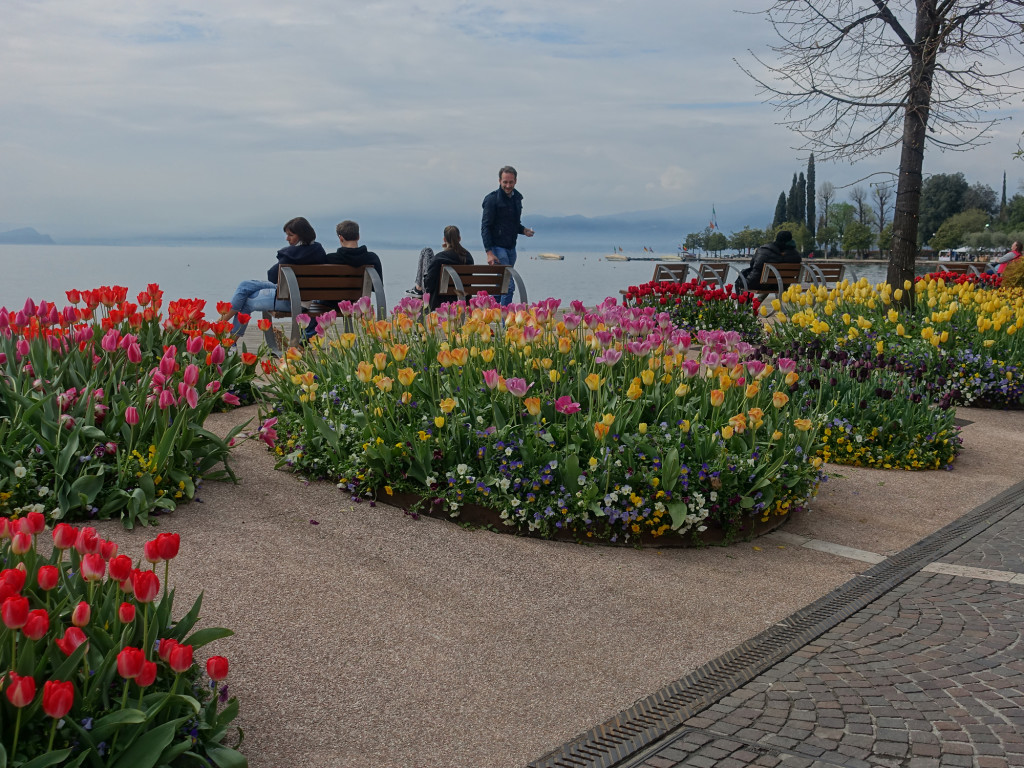 Bardolino - die Stadtgärtner sorgen für ein üppiges Blütenmeer