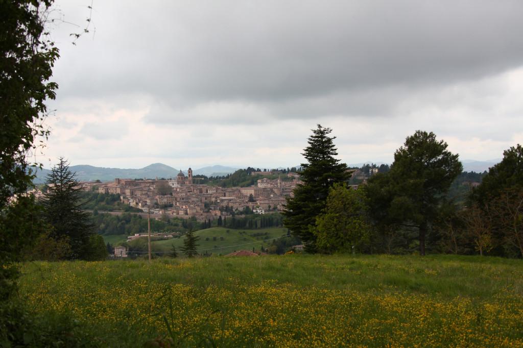 Ein erster Blick auf Urbino