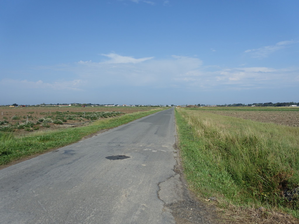 Auf dem Weg von L'Herbaudière zum Hauptort Noirmoutier