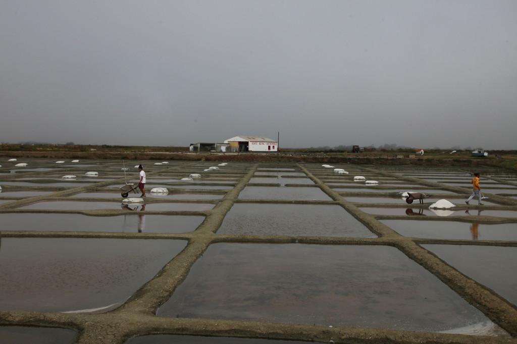 Noirmoutier - Salzgärten